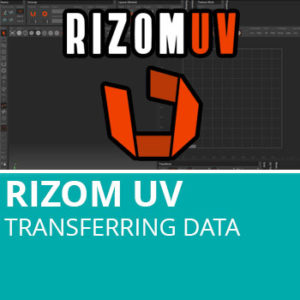RizomUV: Transferring Data