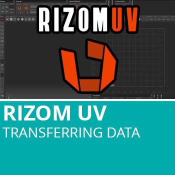 RizomUV: Transferring Data