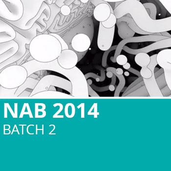NAB 2014 Batch 2