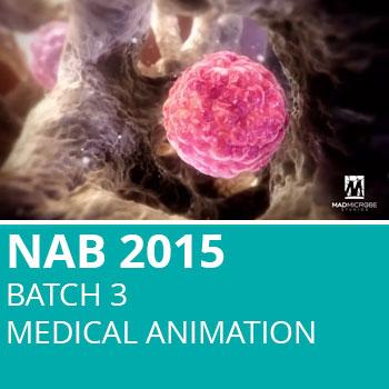 NAB 2015 Batch 3: Medical Animation