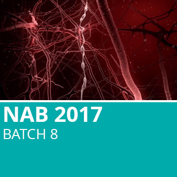 NAB 2017 Batch 8