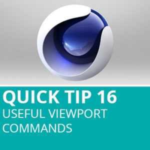Quick Tip 16: Useful Viewport Commands