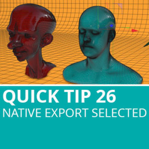 Quick Tip 26: Native Export Selection