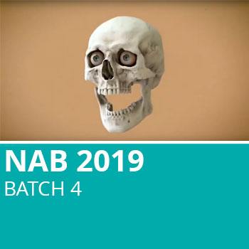NAB 2019 Batch 4