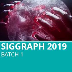 Siggraph 2019 Batch 1